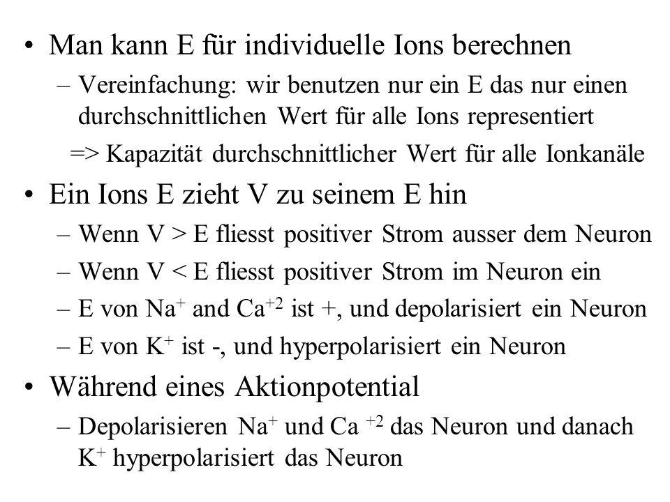 Man kann E für individuelle Ions berechnen