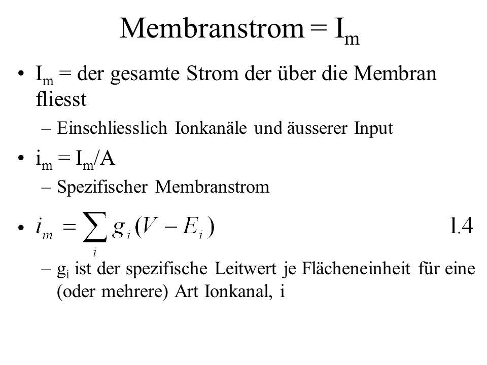 Membranstrom = Im Im = der gesamte Strom der über die Membran fliesst