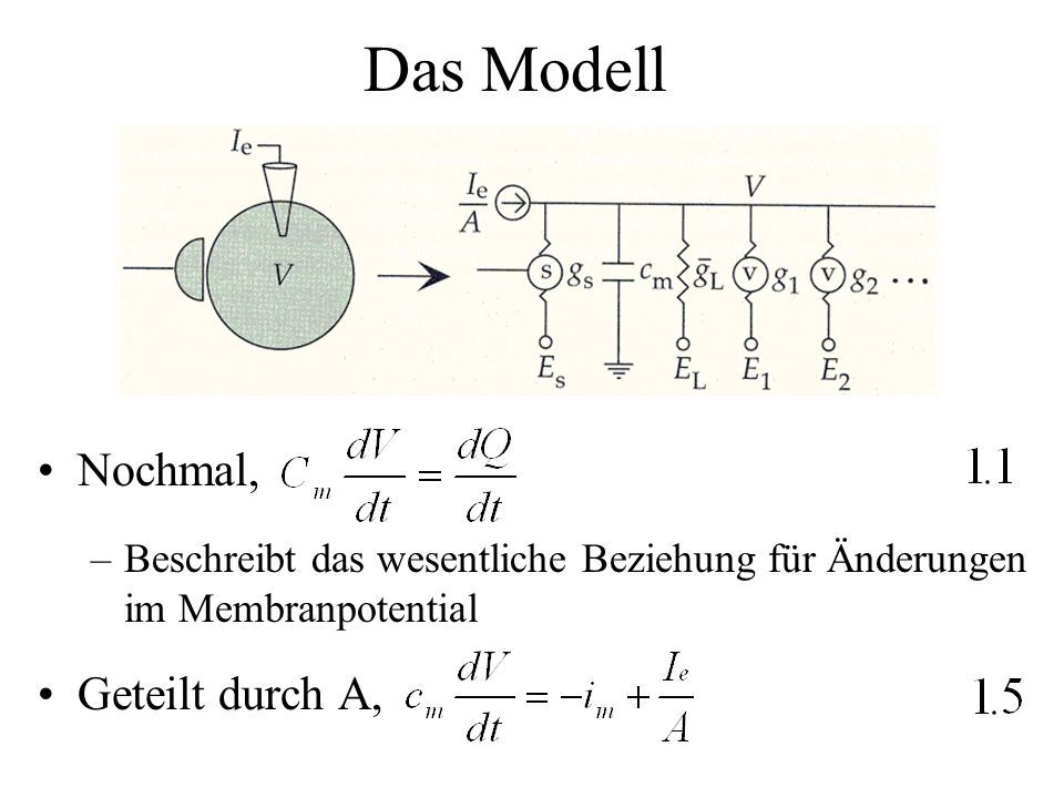 Das Modell Nochmal, Geteilt durch A,