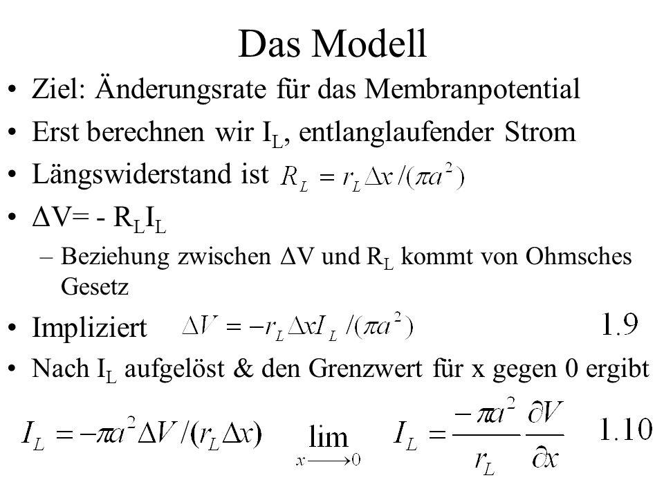 Das Modell Ziel: Änderungsrate für das Membranpotential