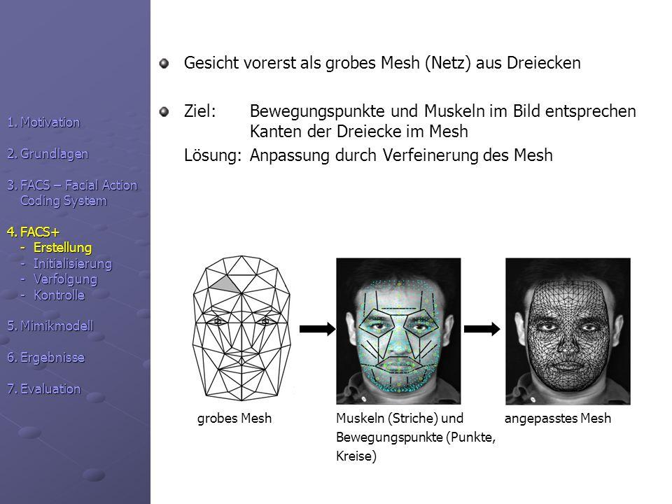 Gesicht vorerst als grobes Mesh (Netz) aus Dreiecken
