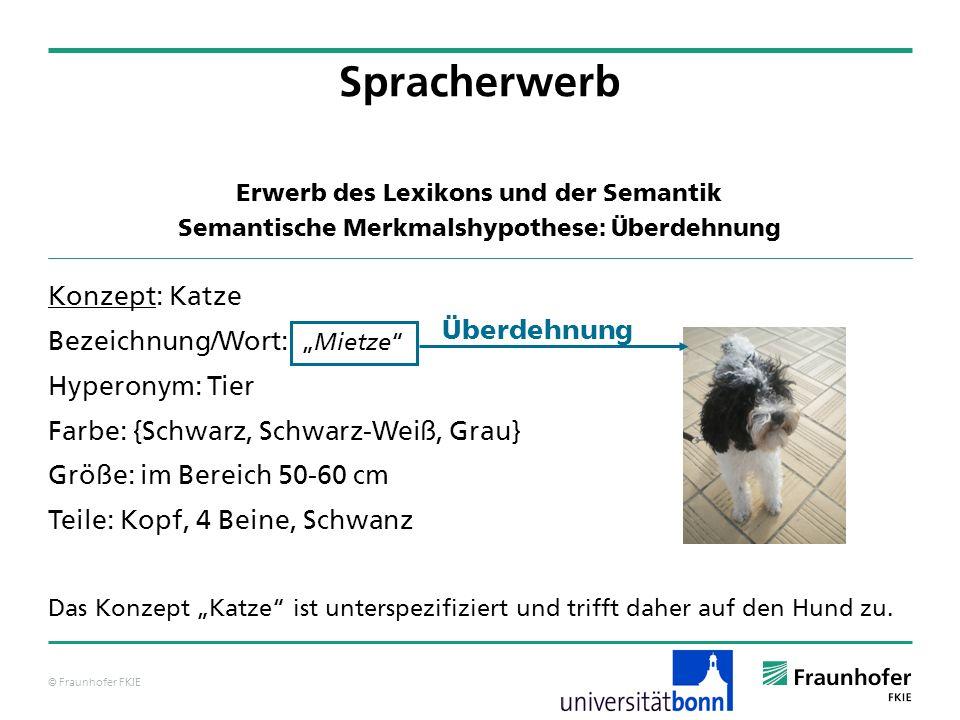 Spracherwerb Konzept: Katze Bezeichnung/Wort: Überdehnung