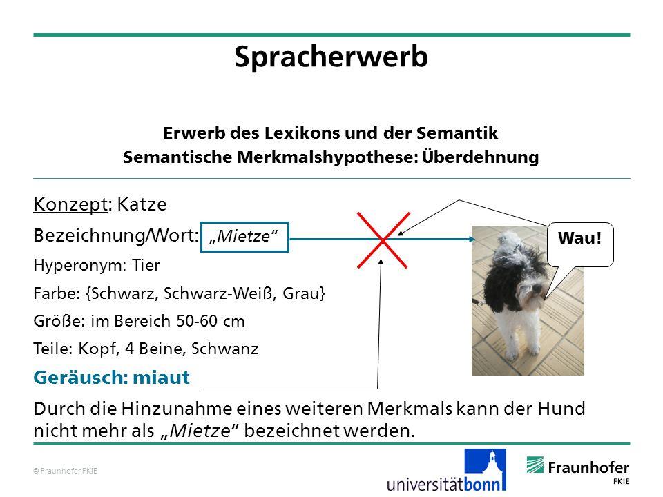 Spracherwerb Konzept: Katze Bezeichnung/Wort: Geräusch: miaut