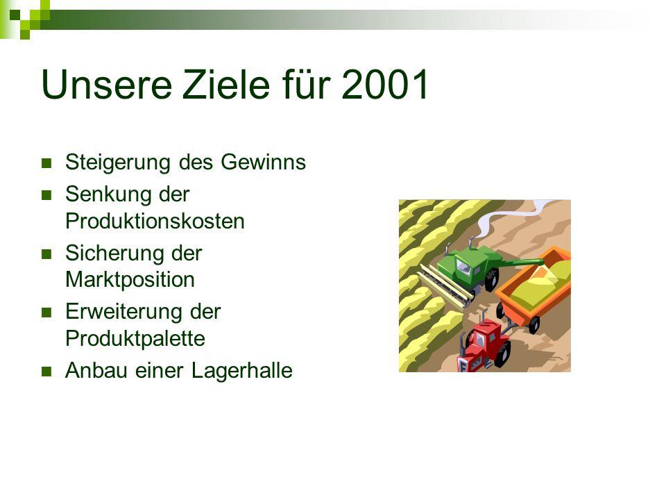 Unsere Ziele für 2001 Steigerung des Gewinns