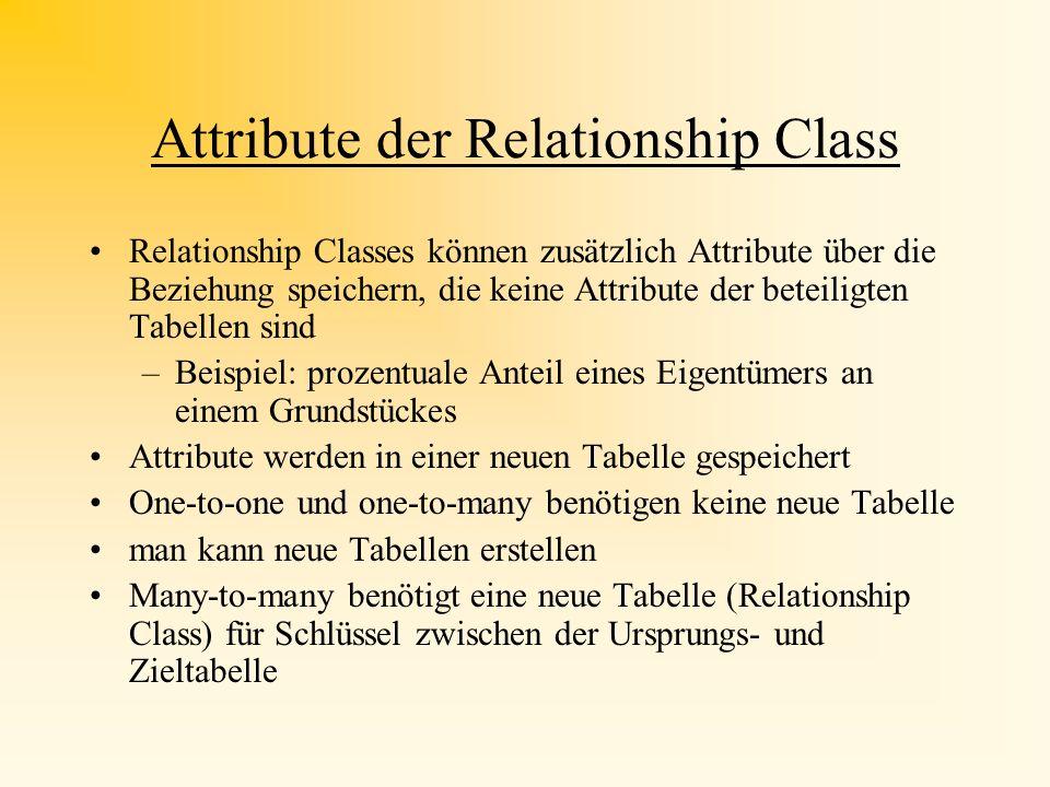 Attribute der Relationship Class