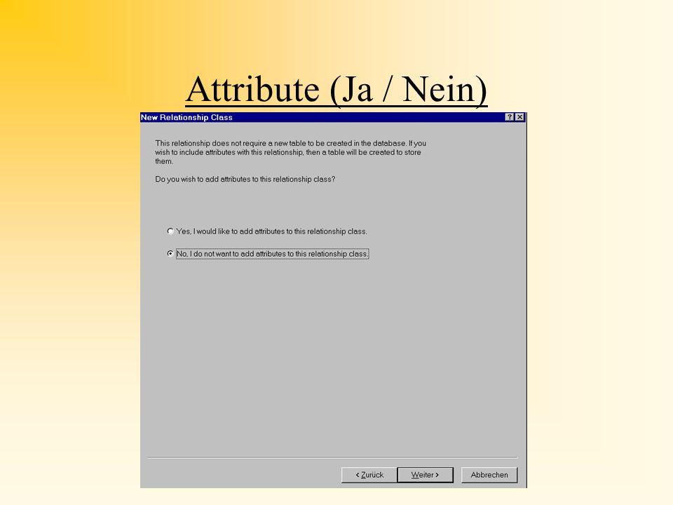 Attribute (Ja / Nein)