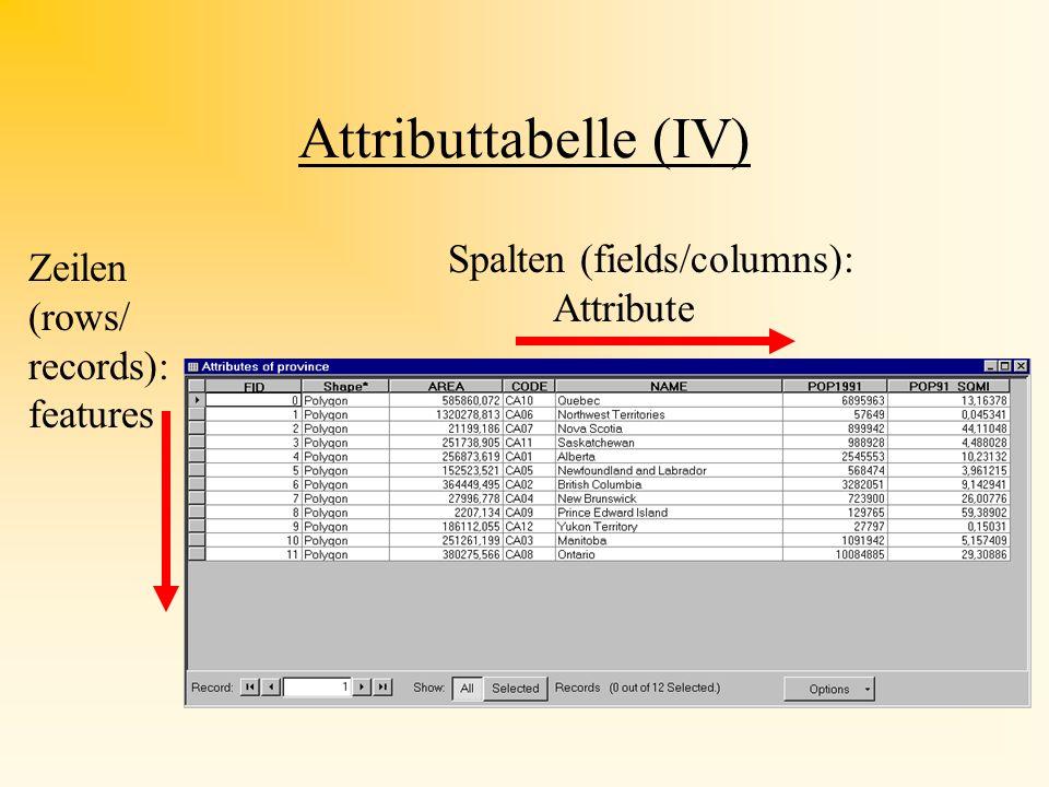 Attributtabelle (IV) Spalten (fields/columns): Attribute