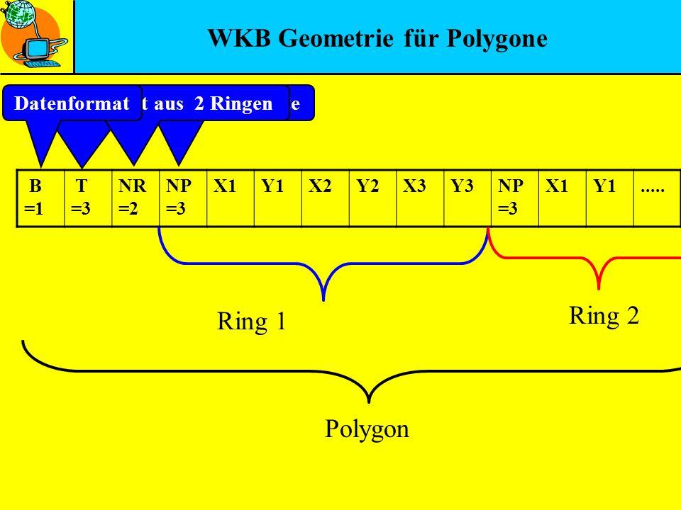 WKB Geometrie für Polygone