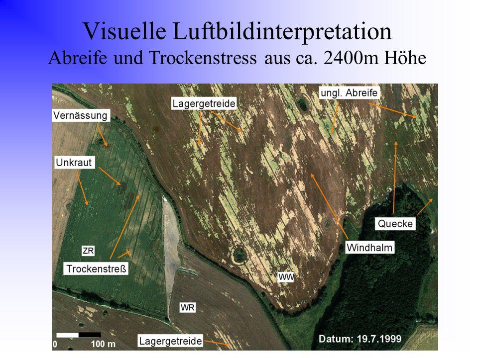 Visuelle Luftbildinterpretation Abreife und Trockenstress aus ca