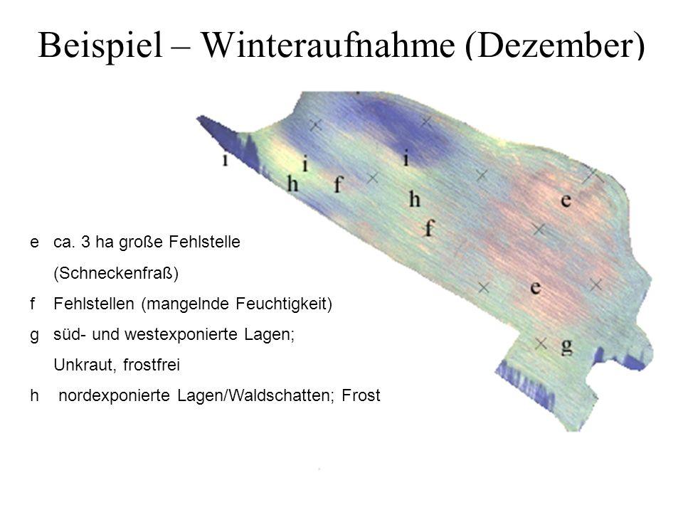 Beispiel – Winteraufnahme (Dezember)
