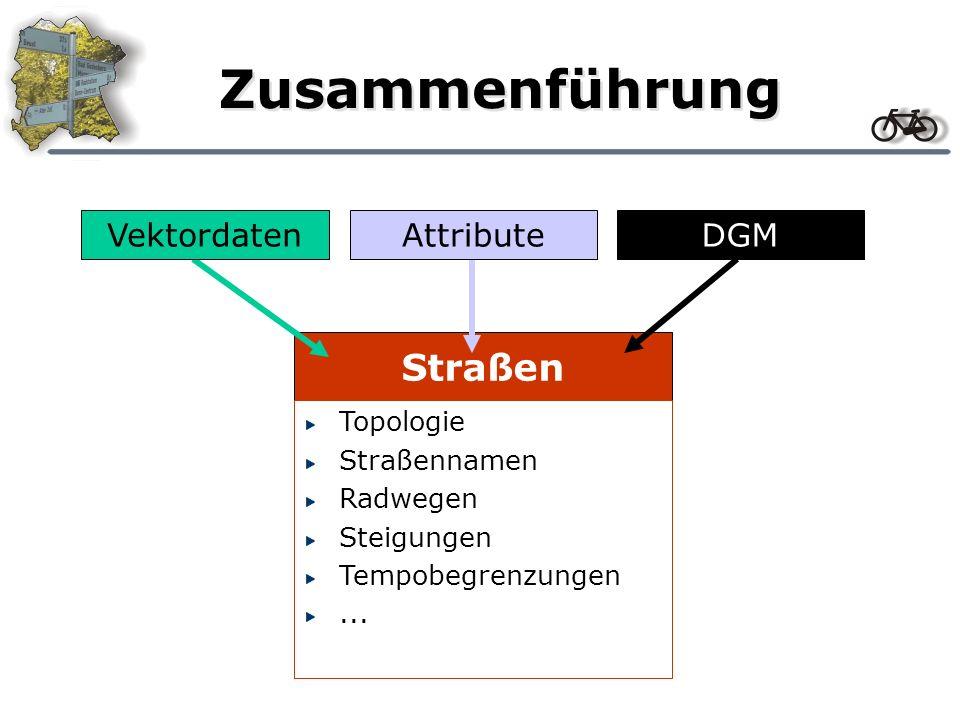 Zusammenführung Straßen Vektordaten DGM Attribute Topologie