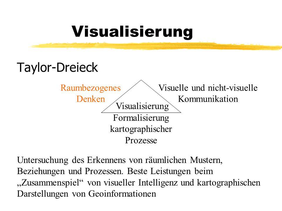 Visualisierung Taylor-Dreieck Visualisierung Raumbezogenes Denken