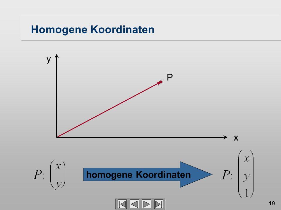 Homogene Koordinaten y P x homogene Koordinaten