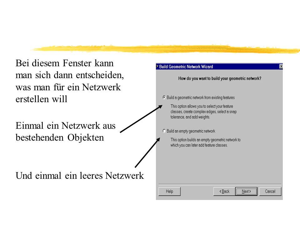 Bei diesem Fenster kann man sich dann entscheiden, was man für ein Netzwerk erstellen will