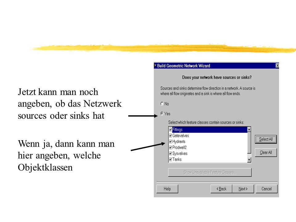 Jetzt kann man noch angeben, ob das Netzwerk sources oder sinks hat