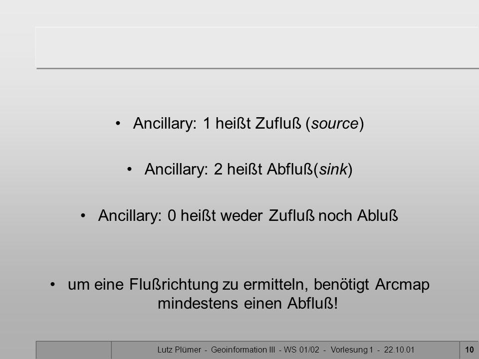 Ancillary: 1 heißt Zufluß (source) Ancillary: 2 heißt Abfluß(sink)