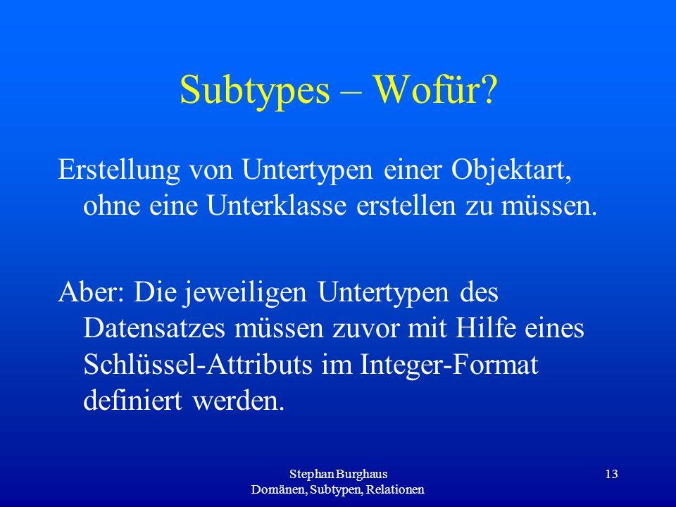 Stephan Burghaus Domänen, Subtypen, Relationen
