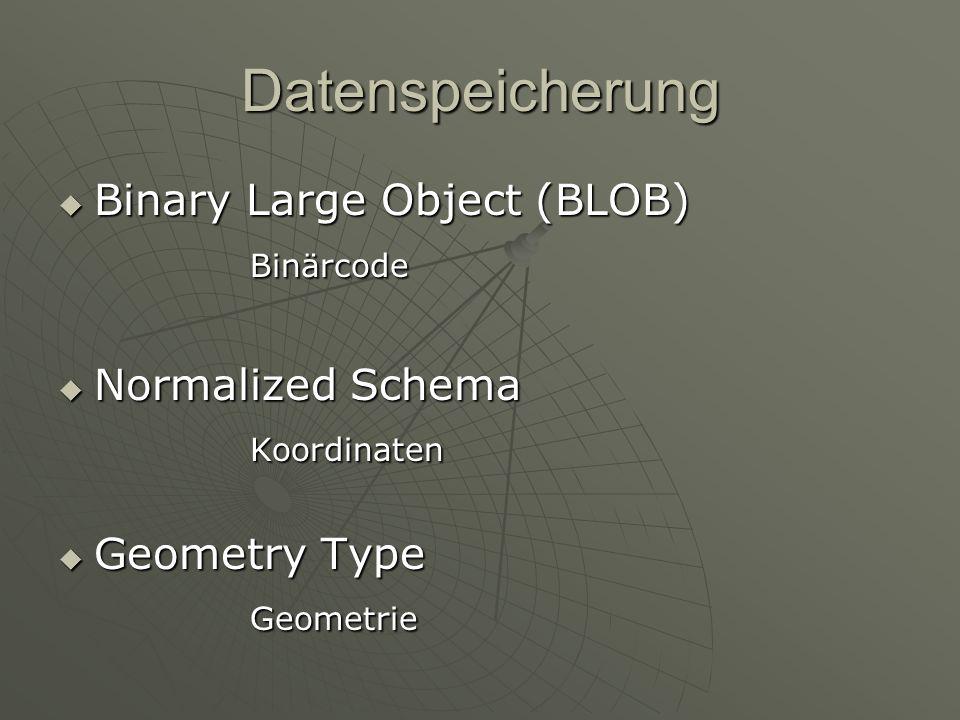Datenspeicherung Binary Large Object (BLOB) Binärcode