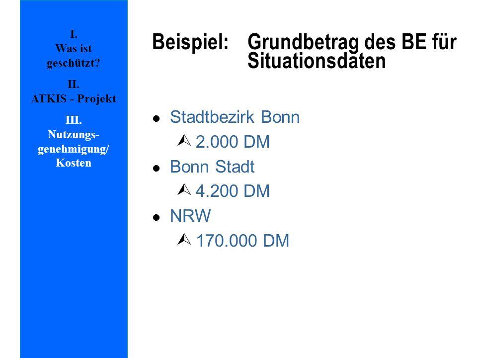 Beispiel: Grundbetrag des BE für Situationsdaten