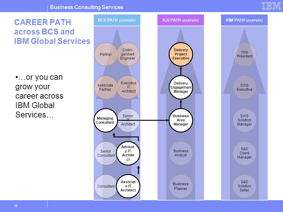 CAREER PATH across BCS and IBM Global Services