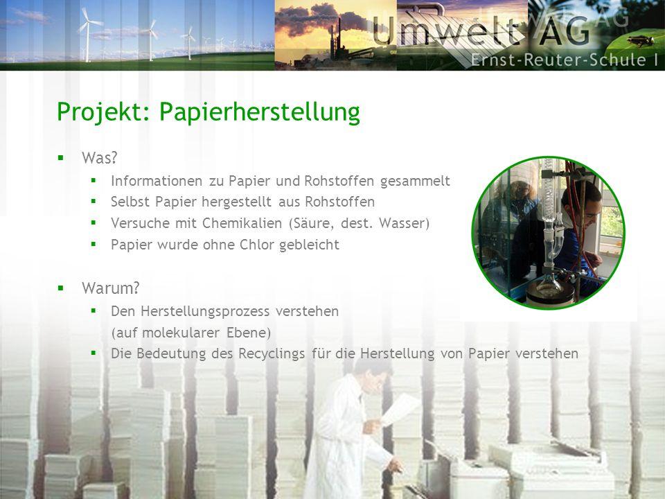 Projekt: Papierherstellung