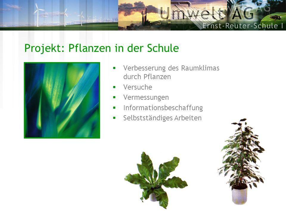 Projekt: Pflanzen in der Schule