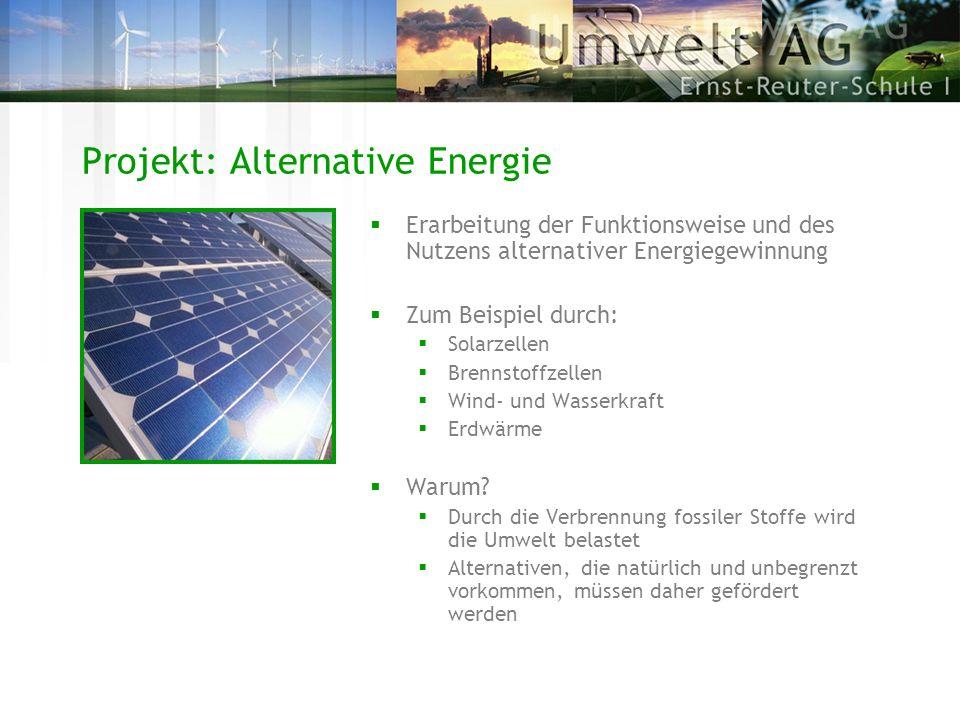 Projekt: Alternative Energie