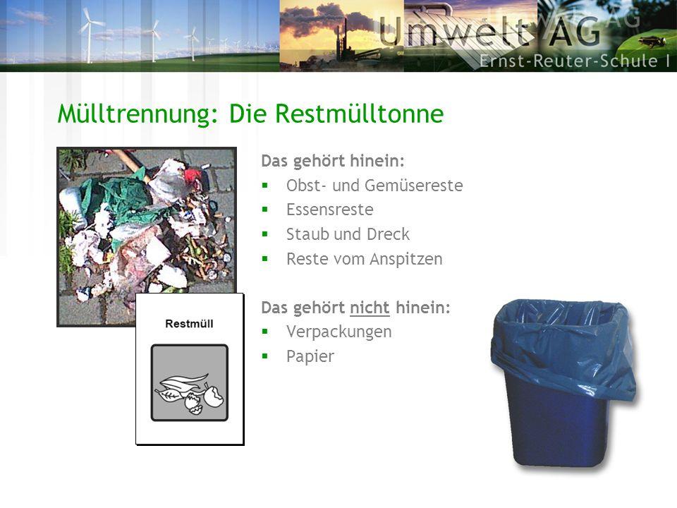 Mülltrennung: Die Restmülltonne