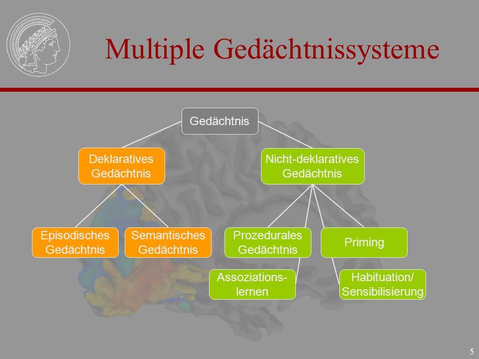 Multiple Gedächtnissysteme