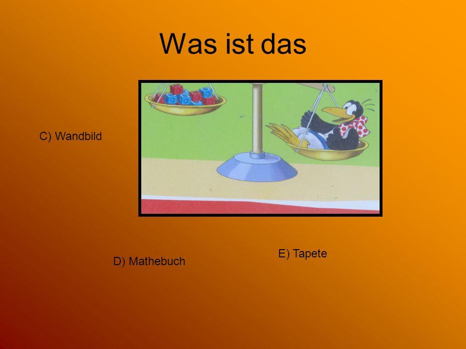 Was ist das C) Wandbild E) Tapete D) Mathebuch