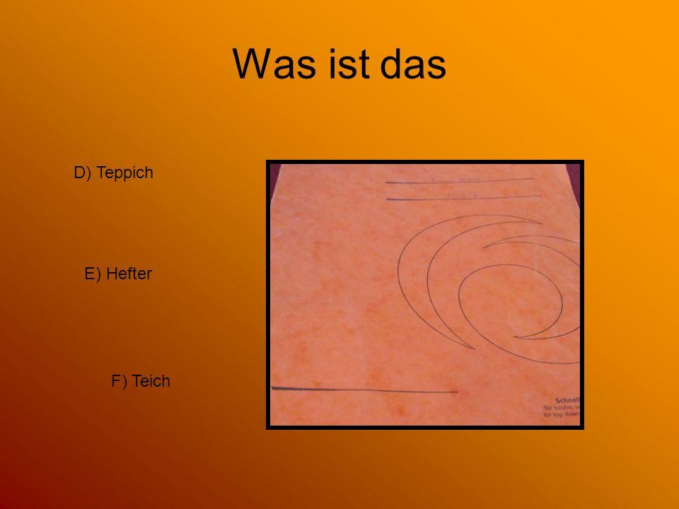 Was ist das D) Teppich E) Hefter F) Teich