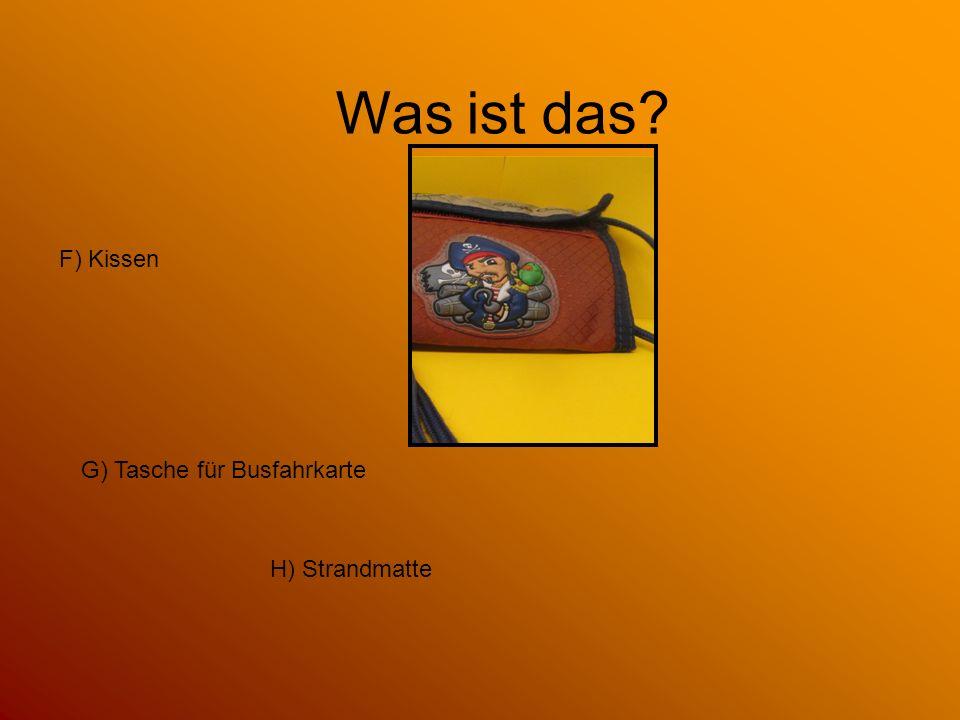 Was ist das F) Kissen G) Tasche für Busfahrkarte H) Strandmatte