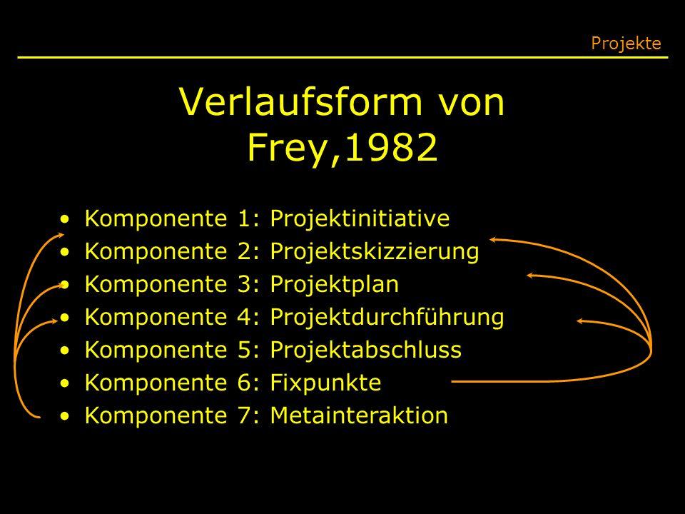 Verlaufsform von Frey,1982 Komponente 1: Projektinitiative