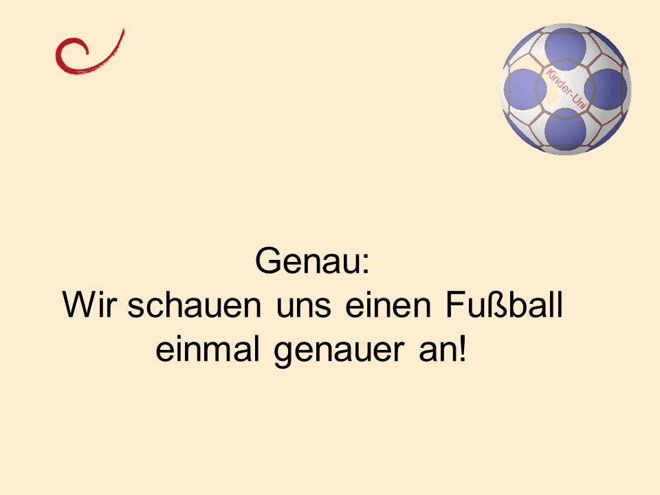 Genau: Wir schauen uns einen Fußball einmal genauer an!