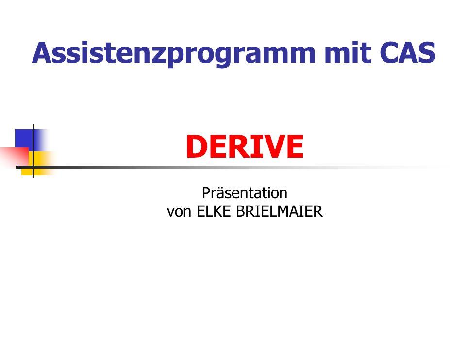 Assistenzprogramm mit CAS