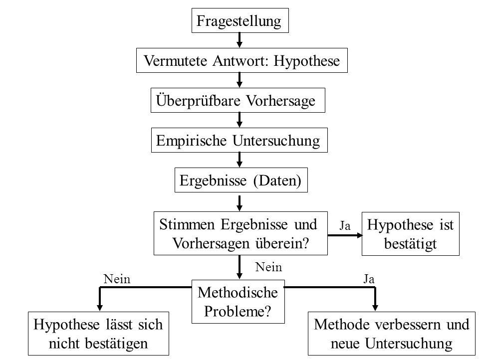 Vermutete Antwort: Hypothese