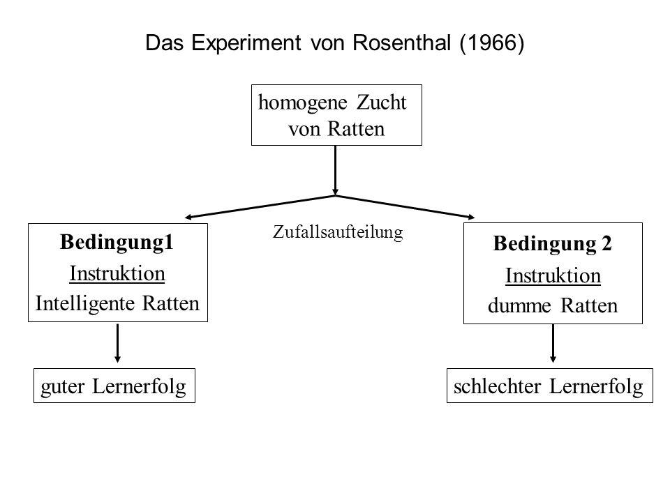 Das Experiment von Rosenthal (1966)