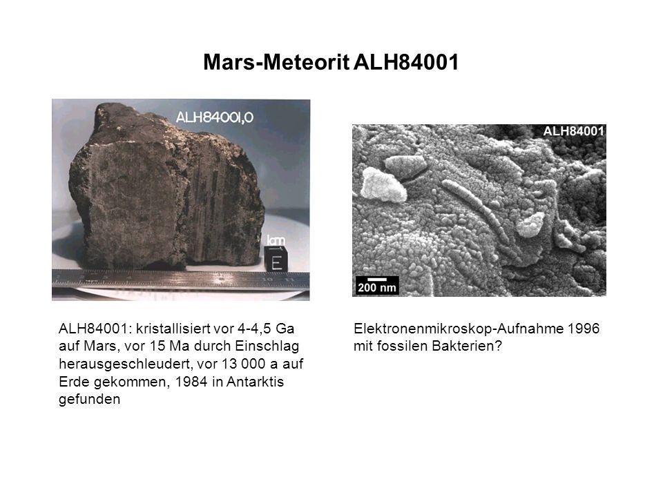 Mars-Meteorit ALH84001
