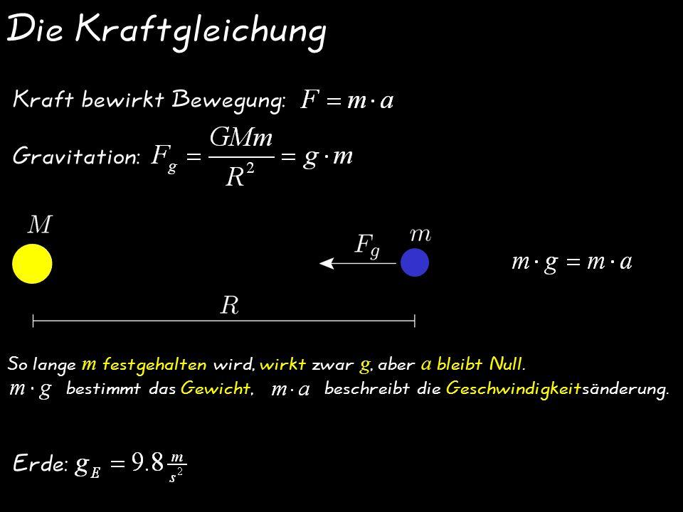 Die Kraftgleichung Kraft bewirkt Bewegung: Gravitation: Erde: