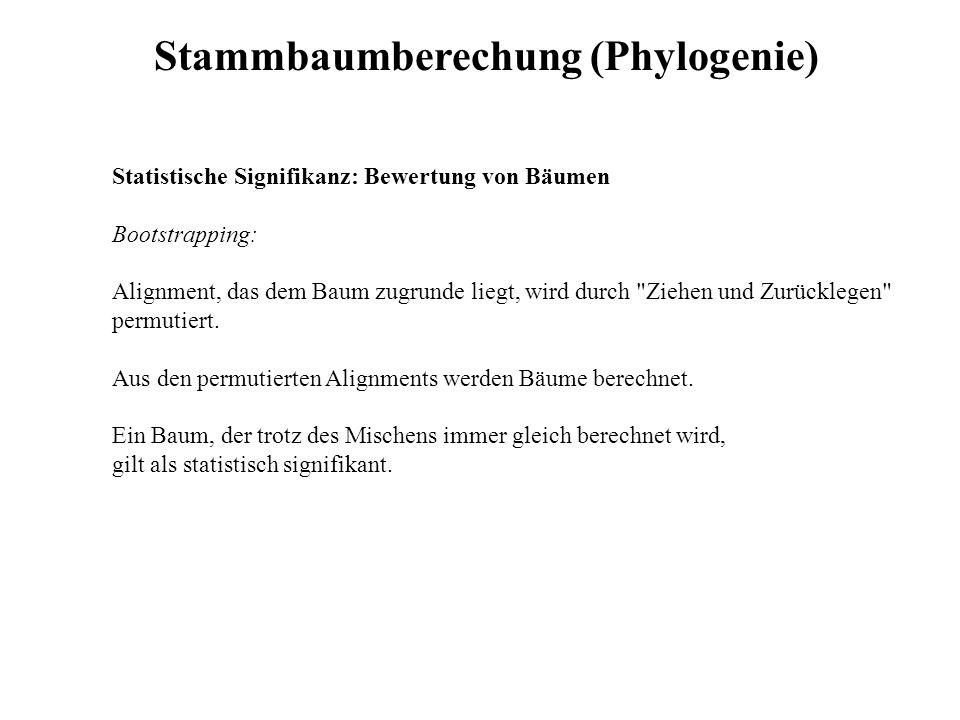 Stammbaumberechung (Phylogenie)