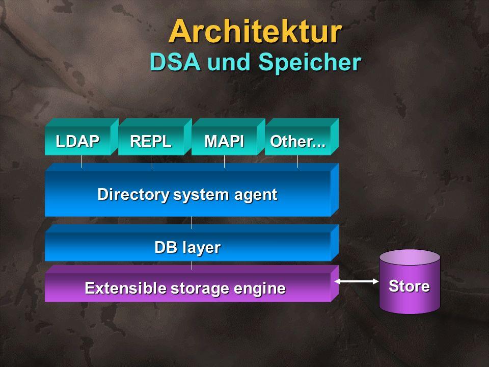 Architektur DSA und Speicher