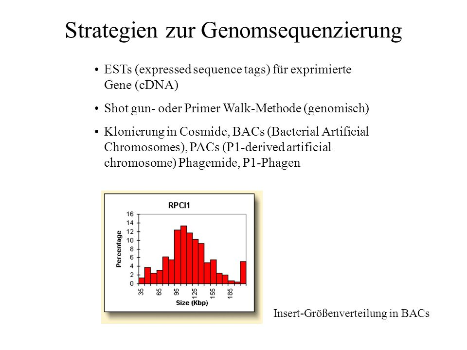 Strategien zur Genomsequenzierung