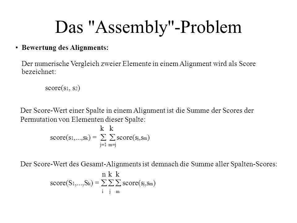 Das Assembly -Problem