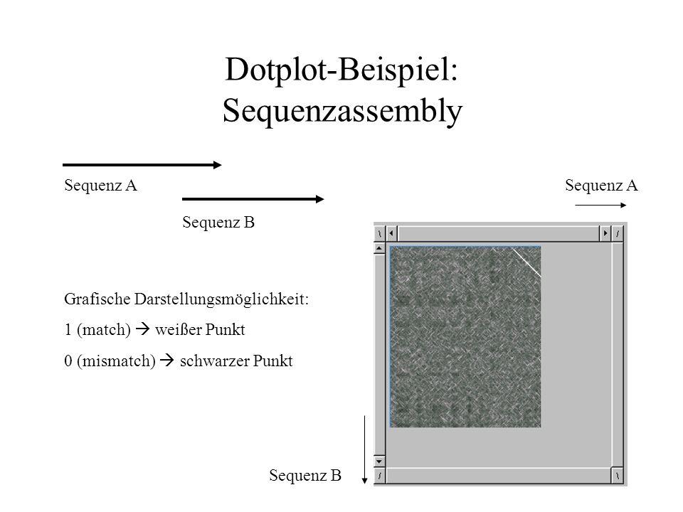 Dotplot-Beispiel: Sequenzassembly