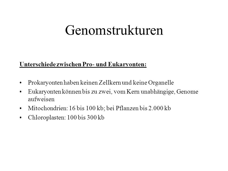 Genomstrukturen Unterschiede zwischen Pro- und Eukaryonten:
