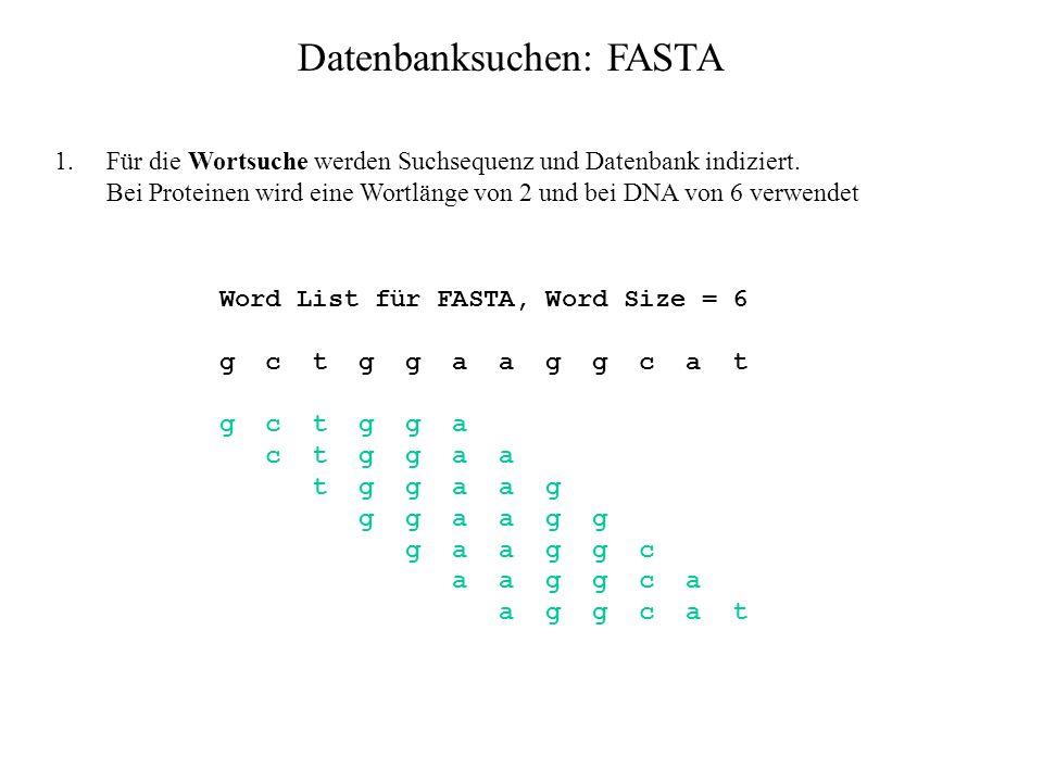 Datenbanksuchen: FASTA