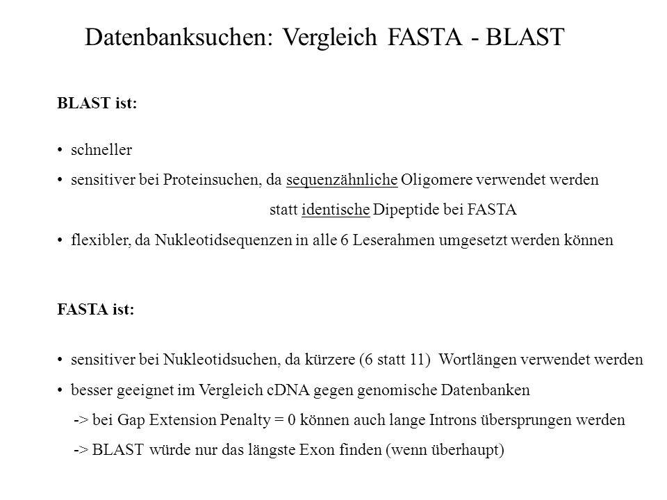 Datenbanksuchen: Vergleich FASTA - BLAST