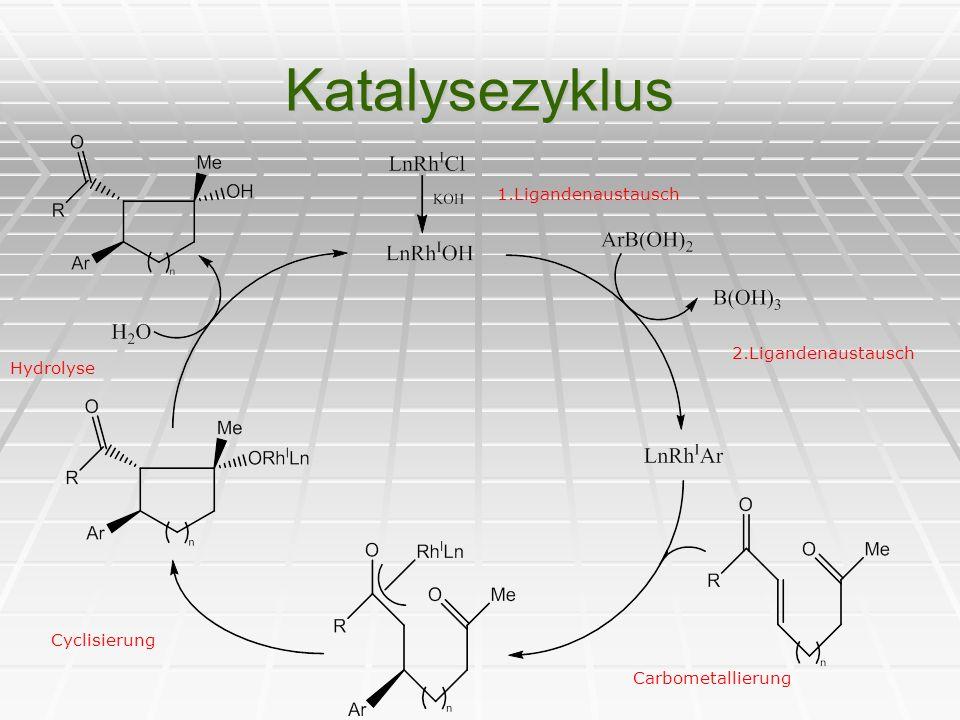 Katalysezyklus 1.Ligandenaustausch 2.Ligandenaustausch Hydrolyse