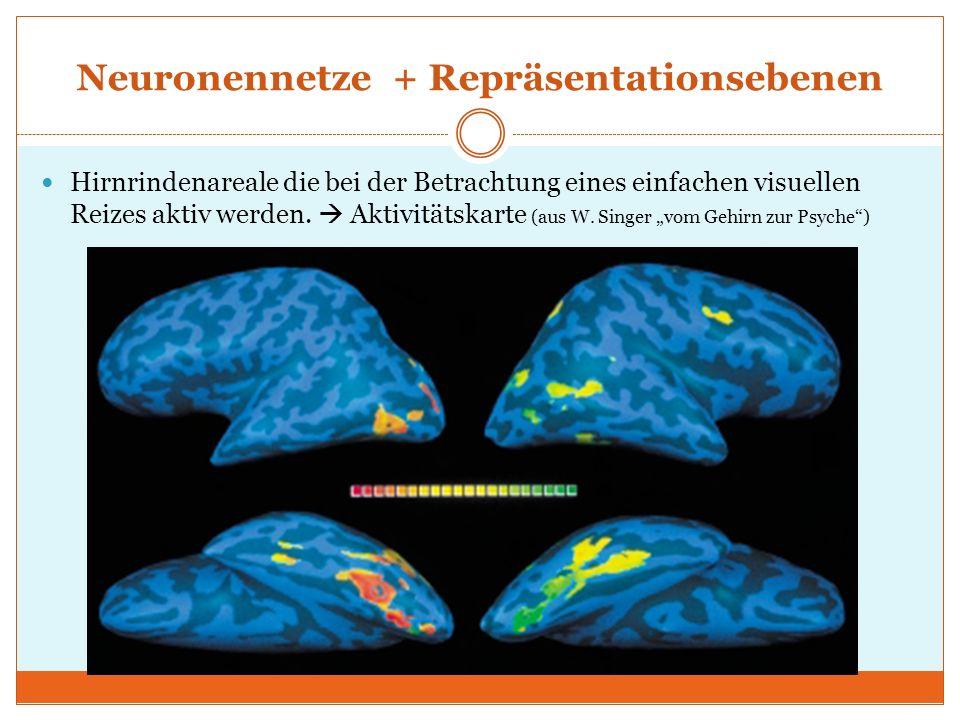 Neuronennetze + Repräsentationsebenen