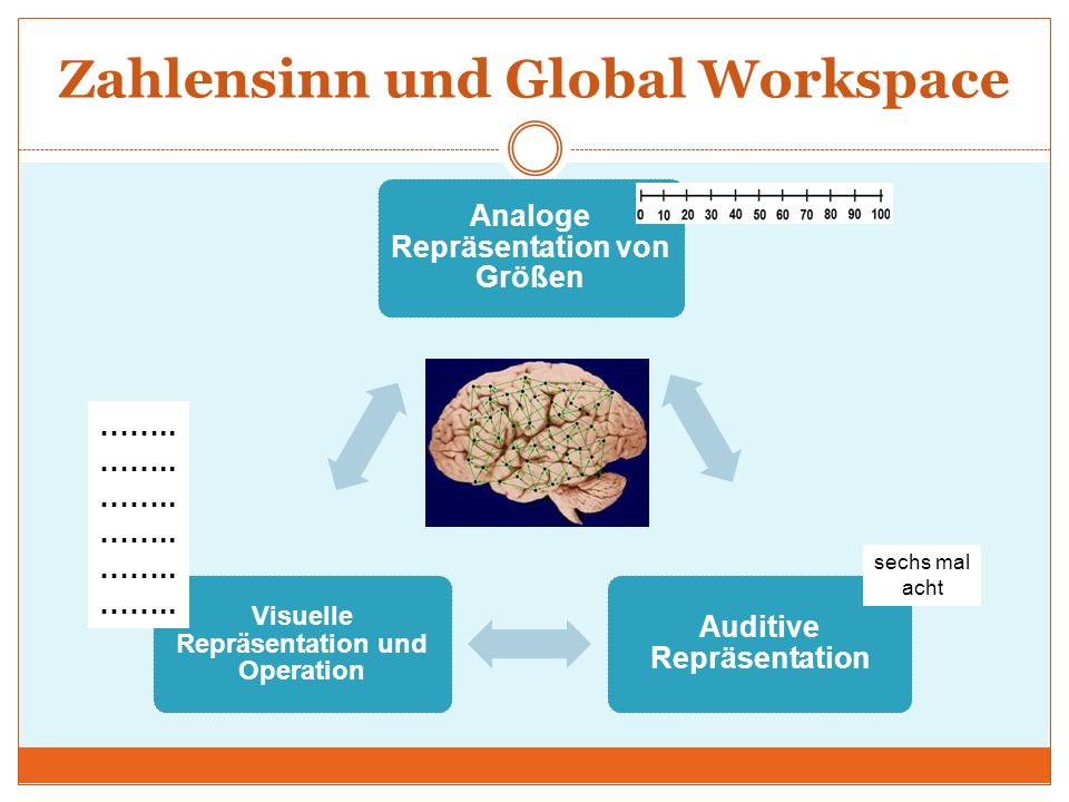 Zahlensinn und Global Workspace